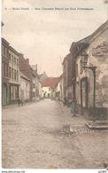 357) Sint-Truiden - Rue Chaussée Neuve - Gekleurd - Sint-Truiden