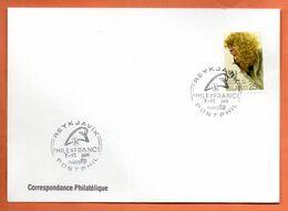 ISLANDE   PHILEXFRANCE  1989 Lettre Entière N° RS 101 - Briefe U. Dokumente