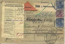 DR 1918, 20+20+60 Pf. Auf Nachnahme Paketkarte V. Schwarzenbek I.d. Schweiz - Ohne Zuordnung
