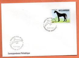 MOZAMBIQUE   PHILEXFRANCE  1989 Lettre Entière N° RS 111 - Mosambik
