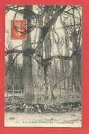 """C.P.A.  ( 77 ) """" FONTAINEBLEAU """"  Forêt De Fontainebleau - Le Chêne Charme   2phot. - Fontainebleau"""