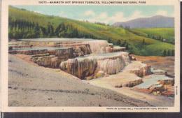 C. Postale - Mammoth Hot Springs Terraces - Circa 1940- Non Circulee - A1RR2 - Yellowstone
