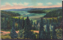 C. Postale - Meadows And Wooded Hills - Circa 1940 - Non Circulee - A1RR2 - Etats-Unis