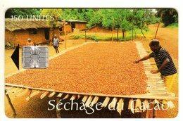 CAMEROUN REF MV CARDS CAM-38 150 U SECHAGE DU CACAO Verso INTELCAM - Camerún