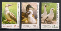Cocos - 2020 - N°Yv. Xxx - Oiseaux / Birds - Neuf Luxe ** / MNH / Postfrisch - Möwen