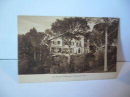 LE MARQUIS VALESCURE SAINT RAPHAEL 83 VAR CPA 1914 E STEHELIN PHOT ST RAPHAEL - Saint-Raphaël