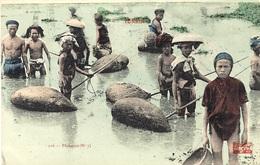 216- Pêcheurs  ( N°2 )  Ed. Assignat - Viêt-Nam