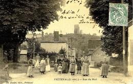 FRÉTEVAL (41) - Rue Du Mail - Ed. Me Radet, Frétéval - Carte Toilée - Autres Communes