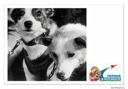 New Postcard Russia Belka And Strelka - Russie