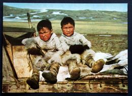 Greenland   Cards Boys From Thule ( Lot 198 ) - Greenland