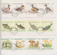 COB B19 - B20 - B21 Carnets Complets Oblitérés Canards Poissons Champignons - Booklets 1953-....