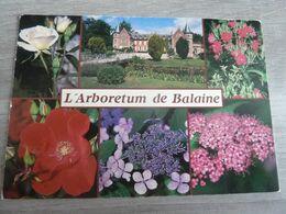 VILLENEUVE-SUR-ALLIER - ARBORETUM DE BALAINE - - Francia