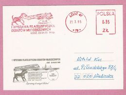 Poland 1995, Lodz , EMA Meter Dog, Dogs , Chien, Hund,  Chiens, Perros, Train, Bridge, Pont - Dogs