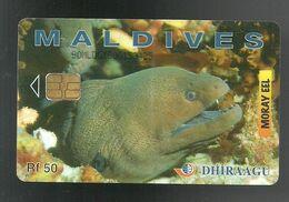 REF. 62 - MALDIVE - TELECARD - DHIRAAGU - Maldiven