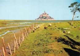 LE MONT SAINT MICHEL  Le Mont Et Les Moutons De Prés-salés     24  (scan Recto Verso)MH2964 - Le Mont Saint Michel