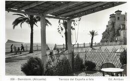BENIDORM ALICANTE - TERRAZA DEL ESPANA E ISLA - FORMATO PICCOLO - (rif. A15) - Alicante
