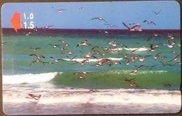 Telefonkarte Oman -  Vögel , Birds -   50OMND - Oman
