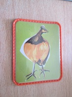 PUB720 Objet Publicitaire Années 60 ECUSSON PLASTIQUE Collection Les Oiseaux Merveilleux CAFE MAURICE N°7 - Magnets