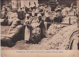 Wolcontrole - 1914-18