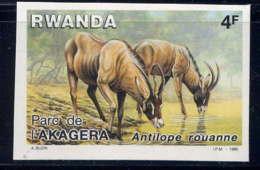 RWANDA - 1217** - PARC DE L'AKAGERA / ANTILOPE ROUANNE - Rwanda
