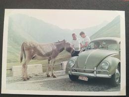 5 PHOTO VOITURE VW COL CROIX DE FER ÂNE SAINT-SORLIN-D'ARVES FRANCE PLAQUE IMMATRICULATION COX KÄFER COCCINELLE HOMME - Automobiles
