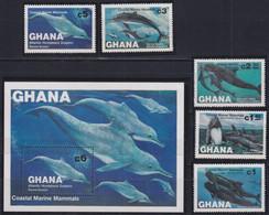 F-EX18240 GHANA MNH 1983 FISH WHALE DOLPHIN SET + SHEET - Mammifères Marins