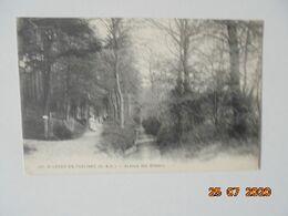 Saint Leger En Yvelines. Avenue Des Oiseaux. Lagrange 107 PM 1915 - St. Leger En Yvelines