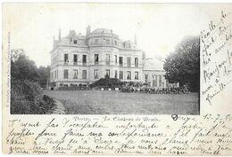 58 - Nièvre - DECIZE - Le Château De Brain - Decize