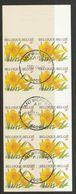 Postzegelboekje 39 Fleurs / Bloemen Trompetnarcis Oblit/gestp - Booklets 1953-....