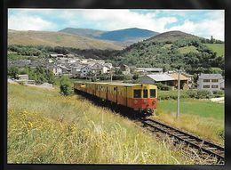 CPM TRANSPORTS - Arrivée Du Petit Train Jaune Au Village - Trains