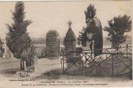 SAINT GILLES CROIX DE VIE 85 Menhir De La Tonnelle Monument Préhistorique Classé Sarcophage Mérovingien Gros Plan - Saint Gilles Croix De Vie