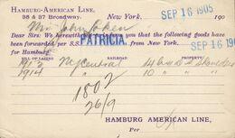USA Postal Stationery Ganzsache PRIVATE Print HAMBURG-AMERICAN Line S.S. Patricia 1905 KRISTIANIA (Arr.) Norway - Briefe U. Dokumente