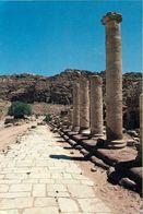 1 AK Jordanien / Jordan * Das Antike Petra - Roman Street Of Columns - Seit 1985 UNESCO Weltkulturerbe * - Jordanien