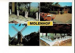 55783 - CAFE RESTAURANT HET MOLENHOF - RODENBERG - MONT ROUGE - WESTOUTER - Houthulst