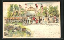 Lithographie Dresden, Deutsche Landwirtschafts-Gesellschaft-Zwölfte-Wanderausstellung 1898, Schafe - Tentoonstellingen