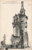 18 Mehun Sur Yevre Ancien Chateau De Charles VII La Tour En Ruines - Mehun-sur-Yèvre