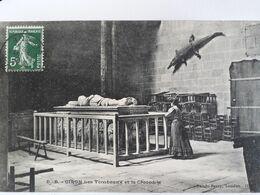 Carte Postale De Oiron, Deux-Sèvres, Les Tombeaux Et Le Crocodile - Frankrijk