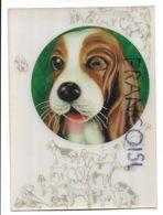 Winking Dog. - Stereoskopie
