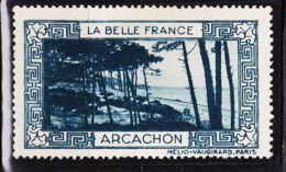 VIGN37 ARCACHON Vignette De Collection LA BELLE FRANCE 1925s Helio VAUGIRARD PARIS Erinnophilie - Erinnophilie