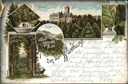 Ansichtskarte Litho AK Eisenach Litho AK Wartburg, Sonne, Umland 1899  - Eisenach