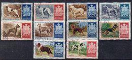 San Marino 1956 MiNr. 547/ 556  O/ Used;  Hunde - Usati