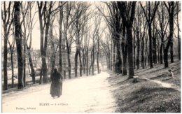 33 BLAYE - Les Cones - Blaye