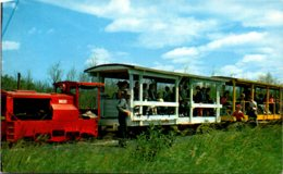 Michigan Soo Junction The Toonerville Trolley And Tahquamenon Falls River Trip - Etats-Unis