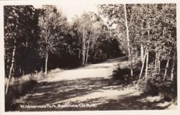 Michigan Mackinaw City Wilderness Park Road Scene Real Photo - Etats-Unis