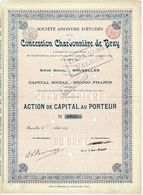 Titre Ancien - Société Anonyme D'Etudes De La Concession Charbonnière De Bray - Titre De 1899 - N° 0935 - Mines