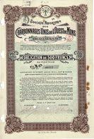 Obligation Ancienne - Sté Anonyme Des Charbonnages Unis De L'Ouest De Mons - Titre De 1916 N°09572 - Mines