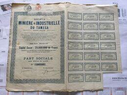 20AA - Minière Et Industrielle Du Tamega Part Sociale Portugal - Mines