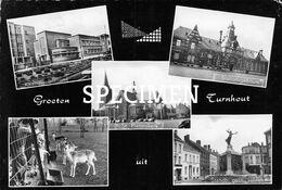 Groeten Uit Turnhout - Turnhout