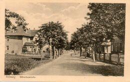 Allemagne - CPA. BITBURG - Mütscherstrabe - Scan Du Verso - - Bitburg