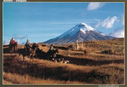 1 AK Ecuador * Der Cotopaxi Ist Mit 5897 M Der Zweithöchste Berg Ecuadors - Einer Der Höchsten Aktiven Vulkane Der Erde - Equateur